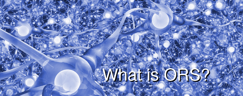 What Is ORS?